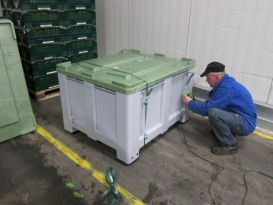 Lafuente Tomey y PCTAD reciben espinacas transportadas por el Freshbox