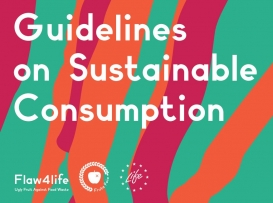Flaw4Life: Guidelines on Sustainable Consumption